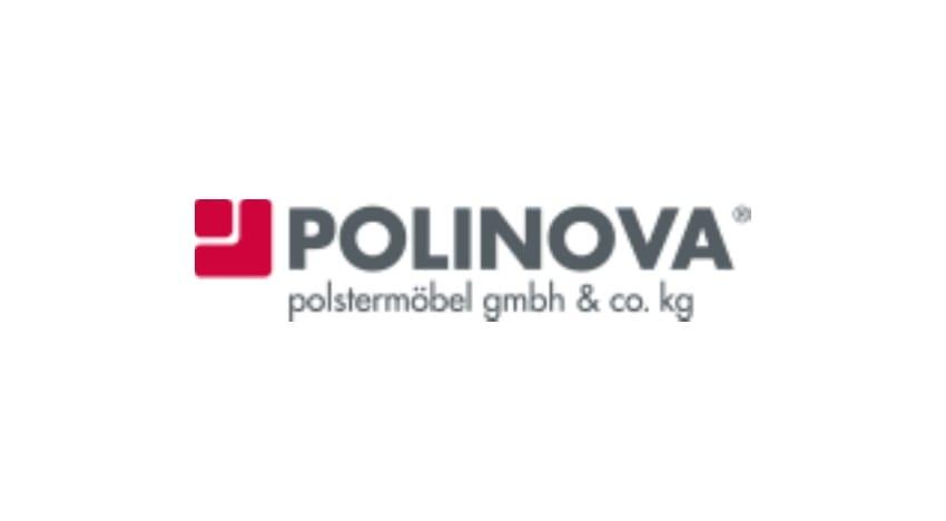 Polinova Wunschmodell